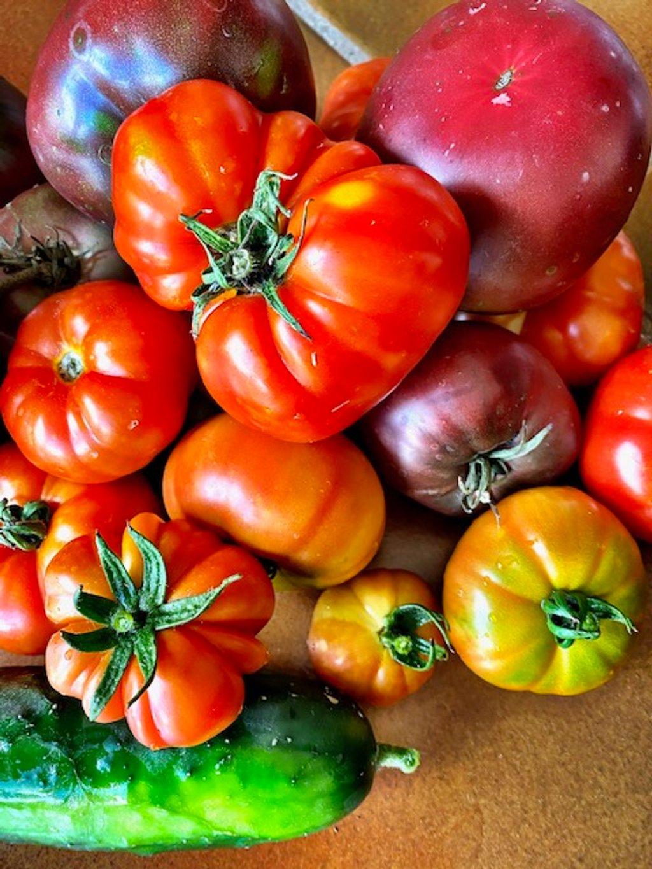 Summer harvest  by fr1da