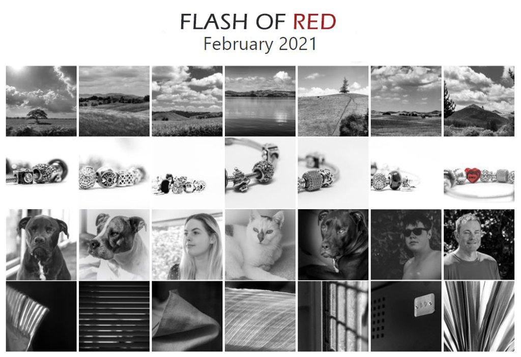 Flash of Red Calendar 2021 by nickspicsnz