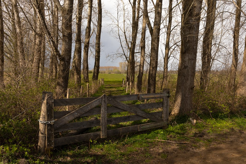 Field entrance by leonbuys83