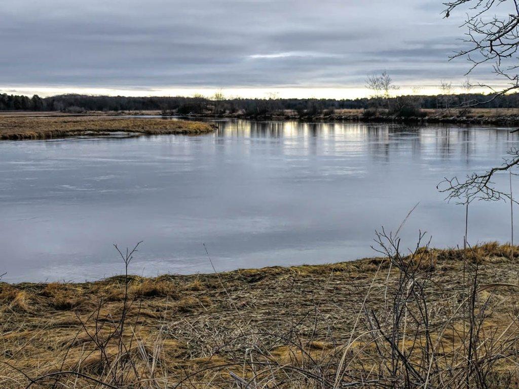 Scarborough Marsh by joansmor