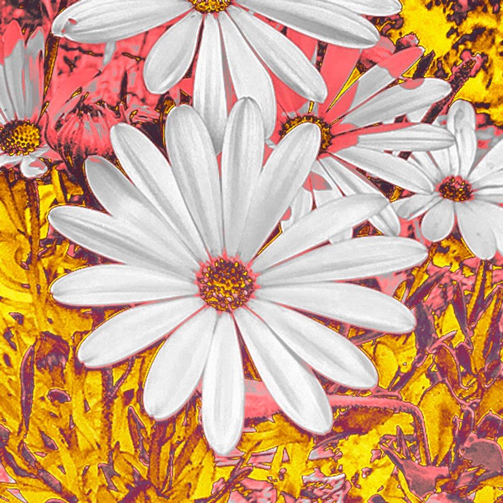 Daisy by jaybutterfield
