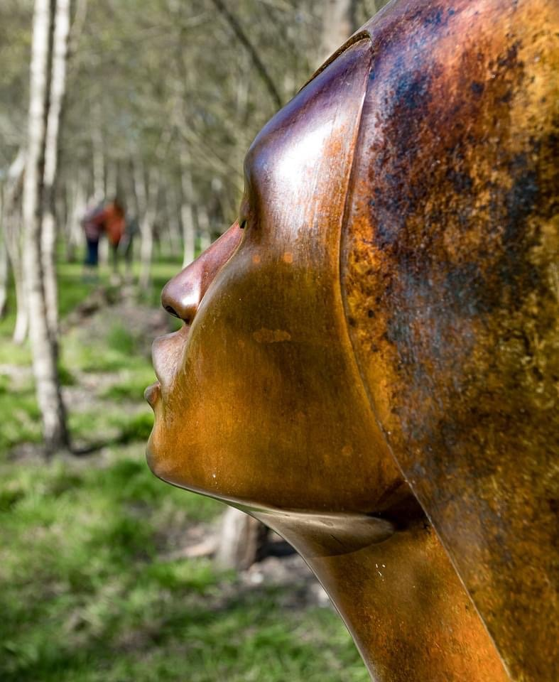 Sculpture by the Lakes  by dorsethelen
