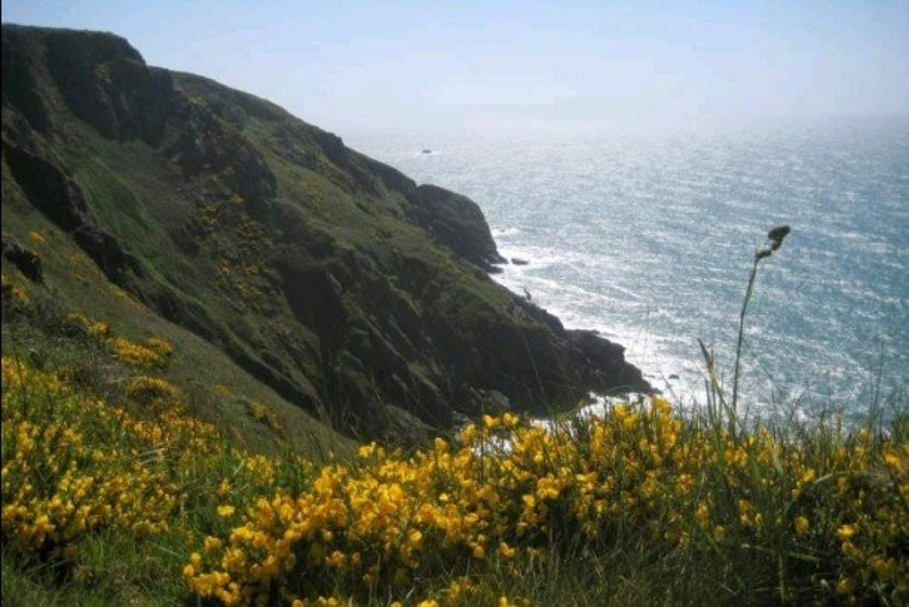 10 Years Ago in Devon  by g3xbm