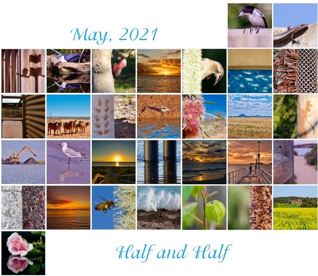 May Calendar View by merrelyn