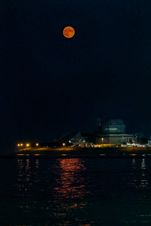 Buck Moon over Adler Planetarium by jyokota