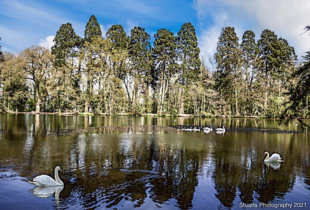 The lake by stuart46