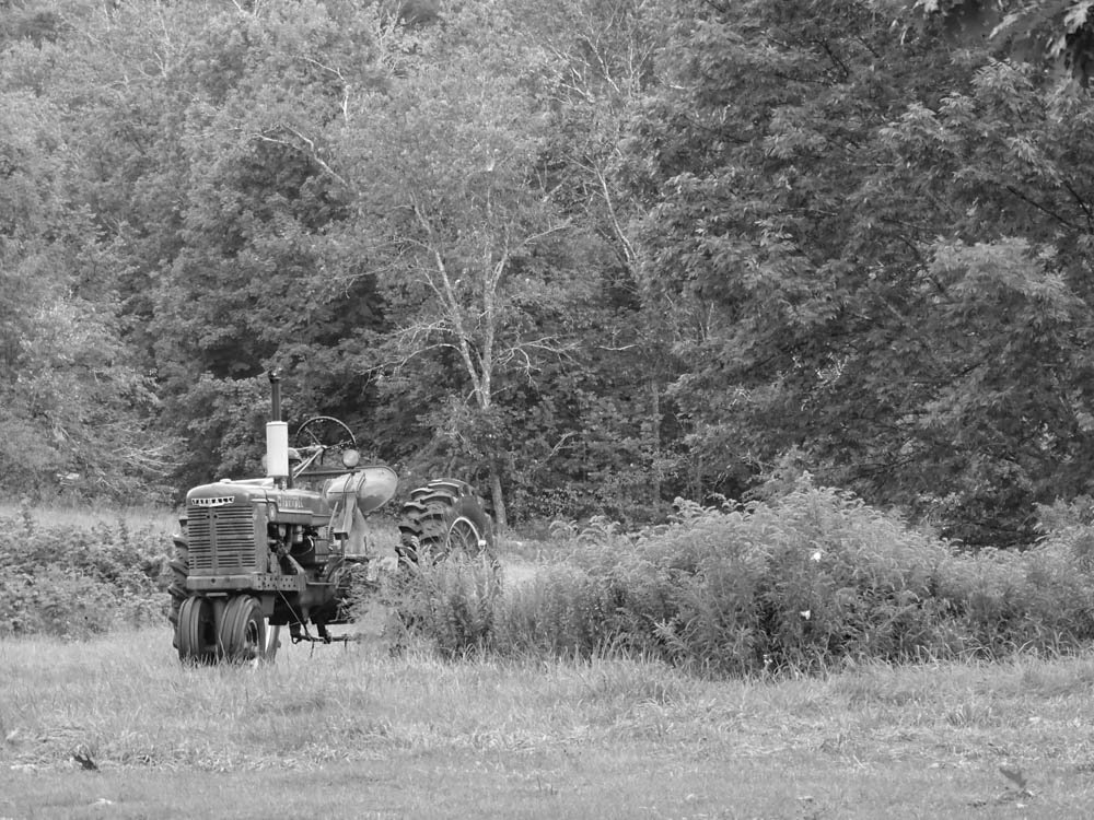 Old Tractor by joansmor