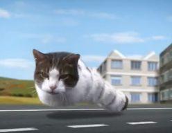KittyCity : un délire névrotique avec des lolCats ?
