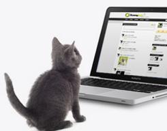 Yummypets - le réseau social pour animaux