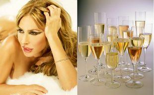 DesCougarsEtDuPinard - le tumblr de ceux qui aiment le vin et les cougars