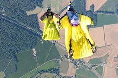 Sell: Wingsuit Freak