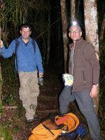 Hier im Regenwald auf Madagskar.