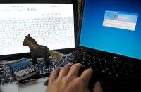 Derzeit verstecken sich Computerviren, sogenannte Trojaner, in Werbebannern deutscher Internetseiten. Sie nutzen Schwachstellen in installierten Programmen wie Java, um ins System zu gelangen. Foto: David Hecker/dapd