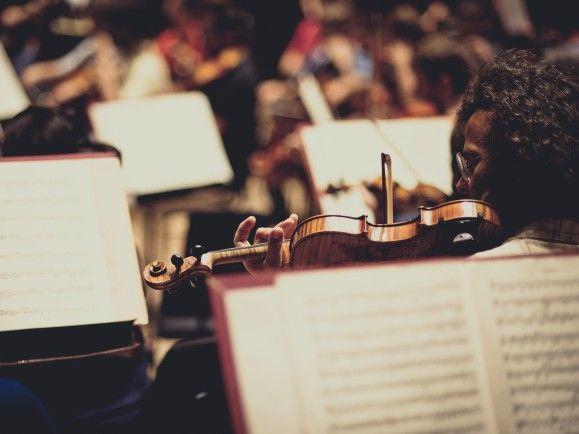 Konzertmeister, Vorspieler, Tuttisten - die Violinen bilden die größte Gruppe im Orchester. Foto: Susann Jehnichen/detektor.fm