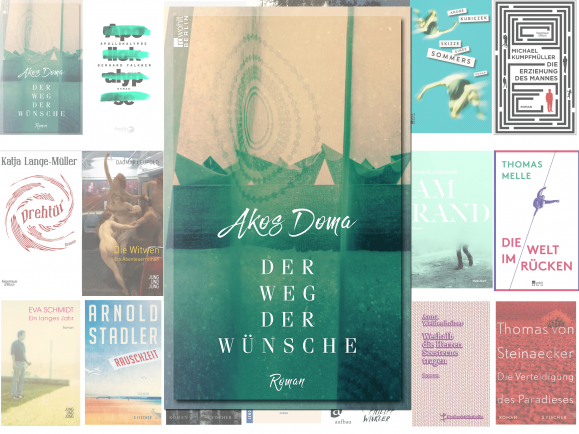 """Der Roman """"Der Weg der Wünsche"""" von Akos Doma gehört zu den 20 Nominierten für den Buchpreis 2016."""