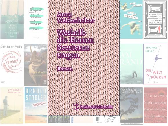 """Anna Weidenholzer steht mit ihrem Roman """"Weshalb die Herren Seesterne tragen"""" auf der Longlist des Deutschen Buchpreises 2016."""