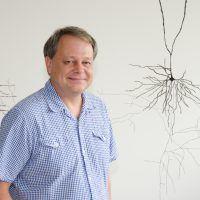 Mark Hübener vom Max-Planck-Institut für Neurobiologie