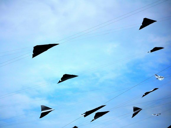 Flugzeuge aus Papier? Die Papier-Branche beweist Offenheit und forscht an neuen Ideen, auch im Flugzeug- und Automobilbau.
