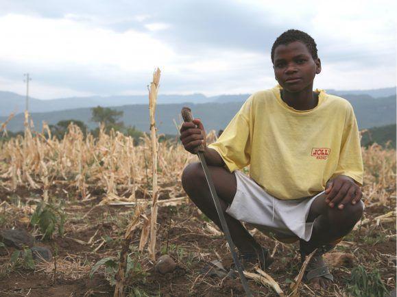 Kleinbauern ernähren rund 80 Prozent der Weltbevölkerung.