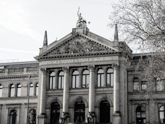 Parlamentarischer Rat