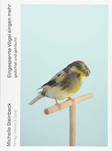 Michelle Steinbeck - Eingesperrte Vögel singen mehr