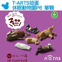 Norns【T-ARTS扭蛋 休眠動物園P6 單顆】矇眼睡 遮眼睡 Zoo熊貓之穴公仔 扭蛋星球 玩具擺飾 日本轉蛋