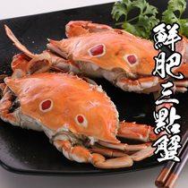 海鮮王 精選鮮肥三點蟹 *6隻( 淨重100-150g/隻 )