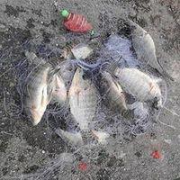 PRO BEROS Outdoor Fishing Net Design Copper Spring Shoal Throw Trolling