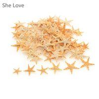100pcs Mini Starfish Craft Natural Sea Stars DIY Beach