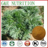 1000g oriental wormwood/ capillary artemisia/ Herba Artemisiae Capillariae  with free shipping