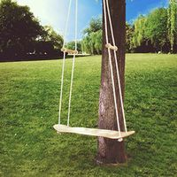 Skateboard Swing Perfect Replacement for Traditional