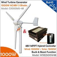 3 Blades 1000W Turbine Generator with 2500W 48V Wind Solar Hybrid MPPT Controller