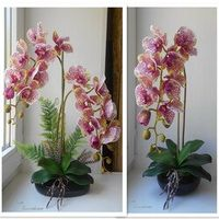INDIGO INDIGO- Phalaenopsis Silk Real Touch