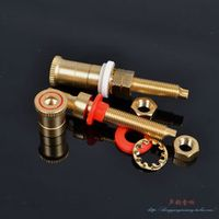 2PCS Pure copper placer gold plating imitation WBT speaker terminal Audio socket Audio and video equipment