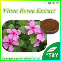 Pure Natural Health Vinca Rosea P.E. 10:1 1000g