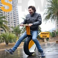 500W Lithium Battery 360wh One Wheel Balancing Unicycle Self Balance Electric Scooter