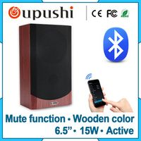 Oupushi Pa 15w digital audio speaker bluetooth wall mount wireless C-6