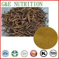 400g Top quality Worm grass/ Cordyceps/ Chinese caterpillar fungus  with free shipping