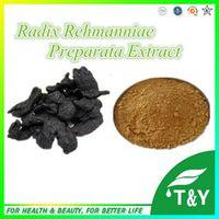 Hot Selling Radix Rehmanniae Preparata P.E. 20:1  300g