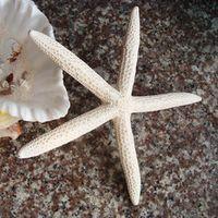 aibeiaily 5-7CM Mediterranean Sea Resin White Five 2PCS/LOT