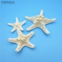 "D.berite 5Pcs 2-3"" White Starfish Great DIY Craft Scrapbook"