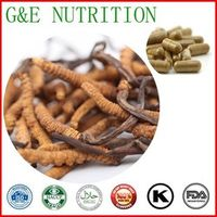 500mg x 600pcs Pure Cordyceps/ Worm grass/ Cordyceps sinensis/ Chinese caterpillar fungus  Capsule free shipping