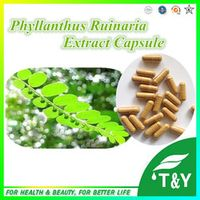 Pure Natural Health  Phyllanthus Ruinaria P.E. Capsule 10:1  500mg*100pcs
