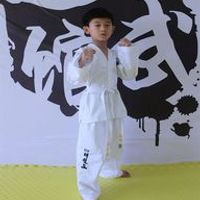 ITF Taekwondo Uniform Adult and Children Dobok Embroidery Pattern Uniform