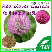 High Quality Factory supply! Red clover P.E. 600g