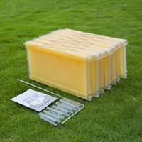Golden palace 7PCS flow hive frames with comb for beehive