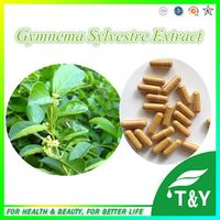 Best Sale  Gymnema Sylvestre P.E. 10:1 500mg*300pcs