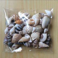 Happy Kiss HappyKiss Funny Mixed Sea Shell Craft Aquarium