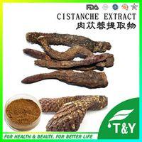organic herbs for health cistanche deserticola P.E. 400g