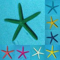 DesertCreations Colorful Five Fingers Starfish